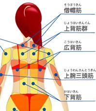 シュラッグ 肩こり に対する画像結果